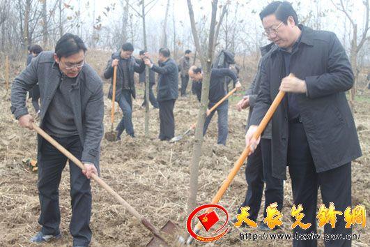 """天长市认真组织开展森林增长工程""""植树造林周""""活动"""
