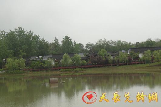 天长市汊涧镇村级集体经济发展纪实一 开展荒山整治 盘活集体资源